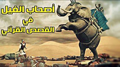 Photo of قصة أصحاب الفيل نبيل العوضي